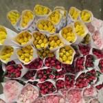 ассортимент тюльпанов